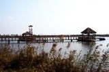 斗龙庄园栈桥